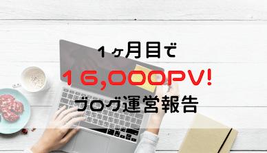 初心者のブログで16,000PV達成までにやったこと!1か月目でも稼げた